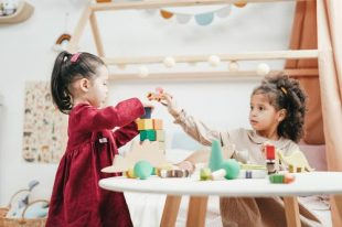 Tips in Choosing Toddler-Friendly Toys