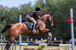 The amazing benefits of using the right boots for horses